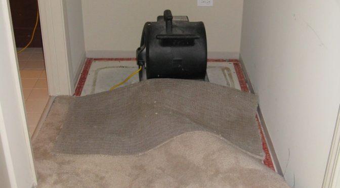 flooded-carpets